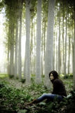seduta della foresta Immagine Stock