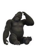 Seduta della gorilla e scratch, scimmia su fondo bianco Fotografia Stock