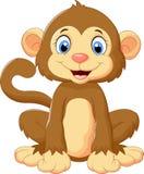 Seduta sveglia della scimmia del fumetto Fotografia Stock