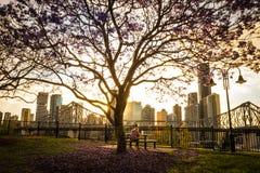 Seduta umana sul banco in parco in città immagine stock libera da diritti