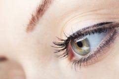 See. Close-up photo of green human eye Stock Photography