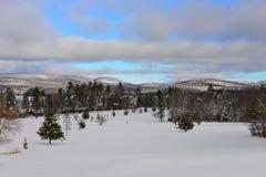 See-angenehmer Golfplatz im Winter Lizenzfreie Stockfotografie