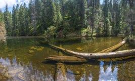 See Arshitsa in den ukrainischen Karpaten stockbild