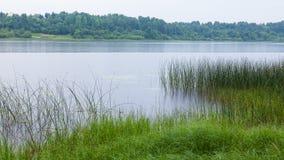 See auf dem Oredezh-Fluss Lizenzfreie Stockbilder