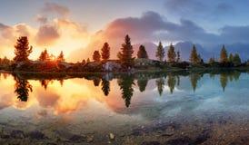 See, Baumreflexion im Wasser Stockfoto