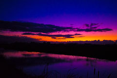 See the beauty trough the trees. Sunset reflection purple blue evening Stock Image