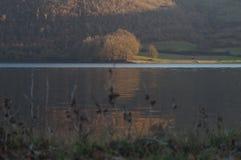 See bei Sonnenuntergang stockfotografie
