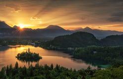 See blutete, Insel und Berge im Hintergrund, Slowenien, Europa Lizenzfreie Stockfotos