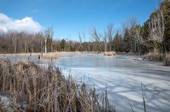 See Champlain eingefroren Stockbild