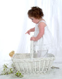 See the Chicken?. Baby girl, standing in basket, pointing at chick Stock Image