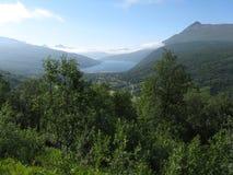 See in der grünen Landschaft Stockbild
