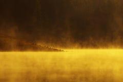 See des Feuers Lizenzfreies Stockbild