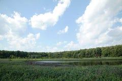 See für trocknendes Abwasser Schmutziges Abwasser in der Kläranlage Der Abfluss in der Industrie Stockfotos