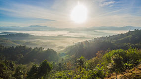 See fog in forest on hilltop. Inside the big forest there have one hilltop can see sunrise above the forest and mountains some days there have fog on the top of Royalty Free Stock Image