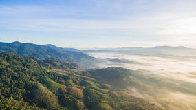 See fog in forest on hilltop. Inside the big forest there have one hilltop can see sunrise above the forest and mountains some days there have fog on the top of Stock Photo