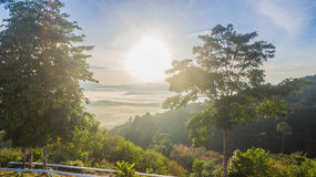 See fog in forest on hilltop. Inside the big forest there have one hilltop can see sunrise above the forest and mountains some days there have fog on the top of Royalty Free Stock Images