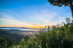 See fog in forest on hilltop. Inside the big forest there have one hilltop can see sunrise above the forest and mountains some days there have fog on the top of Royalty Free Stock Photo