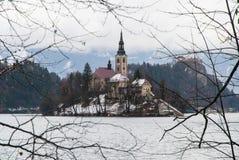 See geblutet, Slowenien Stockbilder
