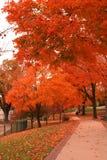 See Genf im Herbst Lizenzfreie Stockfotos