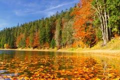 See großer Höhe Synevir am Herbsttag Lizenzfreie Stockfotos