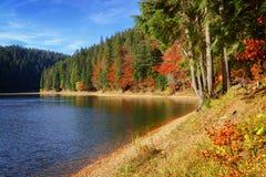 See großer Höhe Synevir am Herbsttag Stockfoto