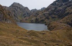 See Harris nahe Harris Saddle am großen Weg Routeburn in Fiordland, Neuseeland stockbilder