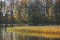 See am Herbst Stockfoto