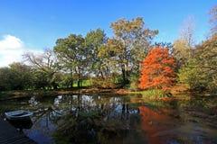 See im Herbst Stockfotografie