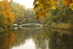 See im Herbstpark stockfoto