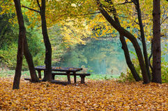 See im Herbstwald lizenzfreie stockfotografie