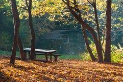 See im Herbstwald stockfotos