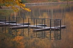 See im Park, Kaliningrad Lizenzfreie Stockbilder