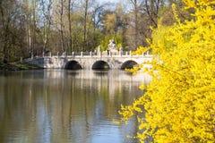 See im Park von Chopin Warschau Lizenzfreie Stockbilder