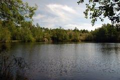 See im Wald Lizenzfreies Stockbild