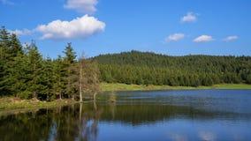 See im Wald-Dorukkaya See Bolu in der Türkei stockfotografie
