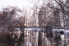See im Winter-Park bei Sonnenuntergang Stockbild