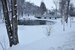 See im Winterpark Stockbild
