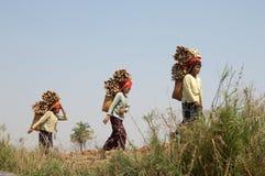 See Inle Myanmar, birmanische Frauen, die Holz tragen Lizenzfreie Stockfotos