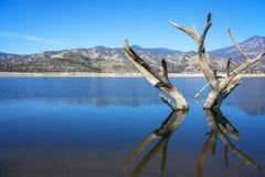 Am See Isabella Sequoia National Forest in Kalifornien lizenzfreie stockfotografie
