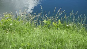 See, Kräuselung auf dem Wasser mit der Reflexion von Wolken stock footage