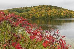 See Lida In Autumn Lizenzfreies Stockbild