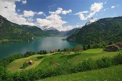 See Luzerne und die Alpen lizenzfreies stockbild