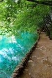 See magischer Fahrt Plitvice, Kroatien Stockfotos