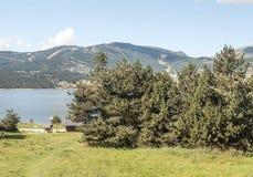 See mit Bäumen Lizenzfreie Stockfotografie