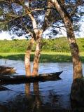 See mit Bäumen und Kanu Stockbilder