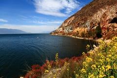 See mit Blumen und Berg Stockbild