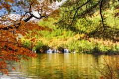 See mit haarscharfem Wasser unter Laub von Bäumen im Herbst lizenzfreies stockbild