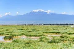 See mit Kilimanjaro-Berg im Hintergrund, Kenia lizenzfreie stockfotos