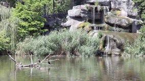 See mit Kormoranvögeln Lizenzfreies Stockbild