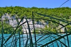 See mit leuchtendem Azurblau-farbigem Wasser hinter den Schilfen lizenzfreie stockbilder